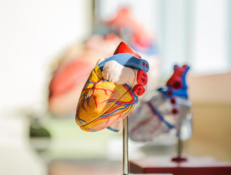 insomnia and cardiovascular disease - azure medical perth