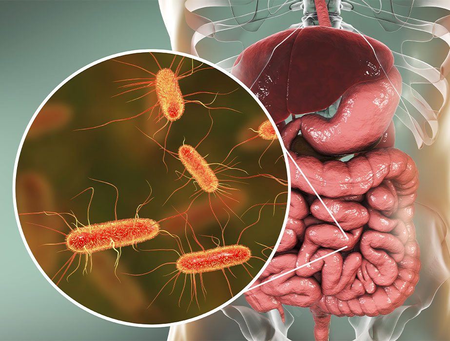 gut health doctor perth azure medical