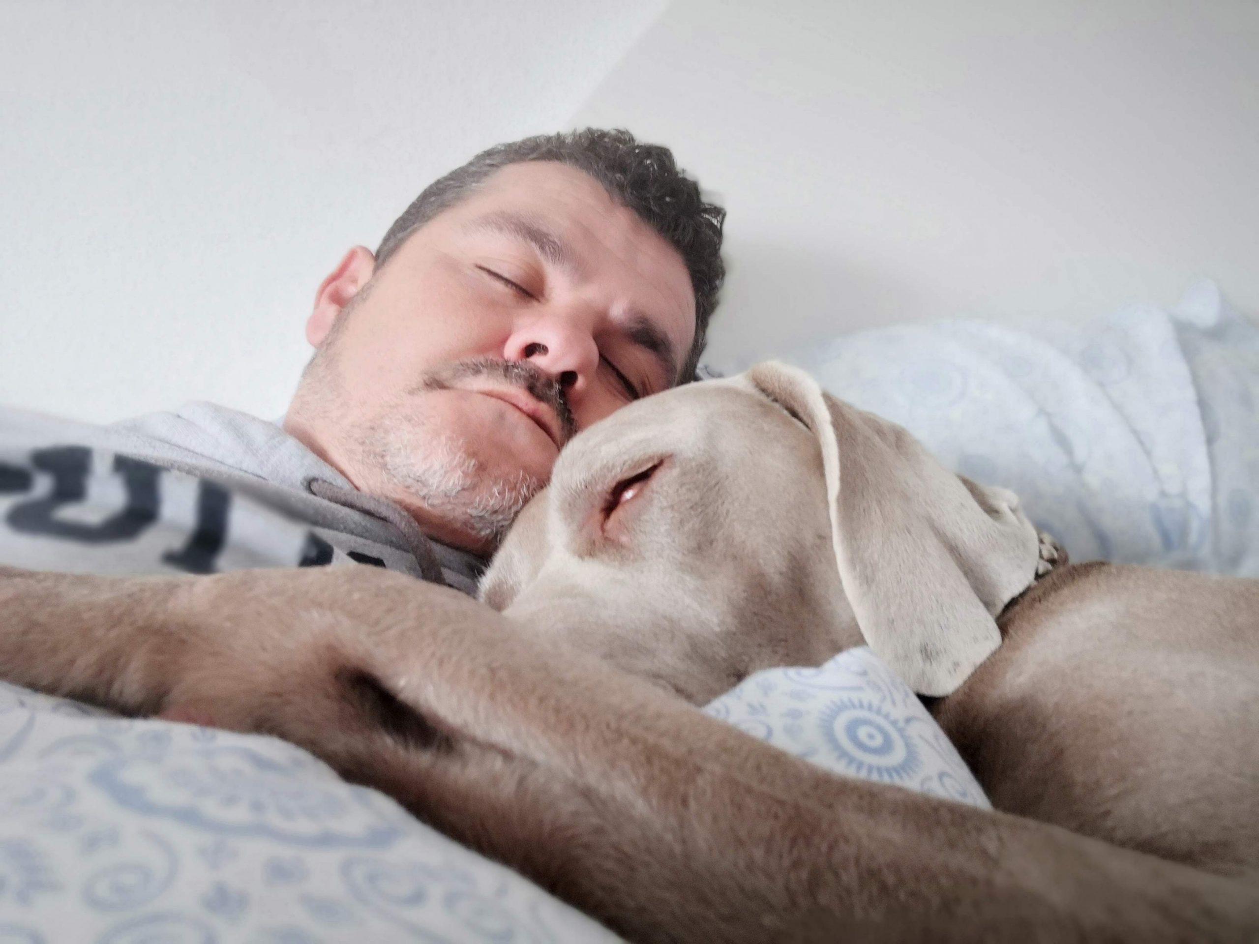 man asleep on bed with dog.
